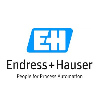 endress hauser.png